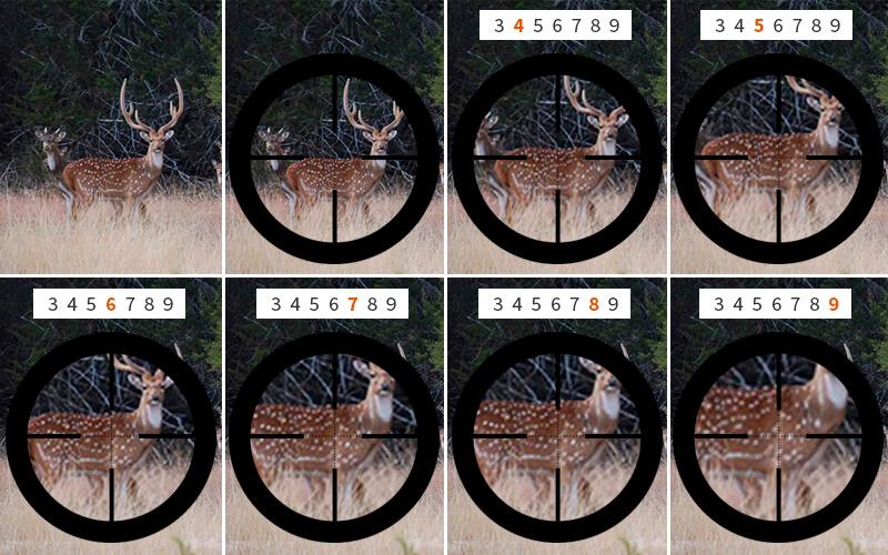 niveles de magnificación o zoom en una mira de 3x9X40