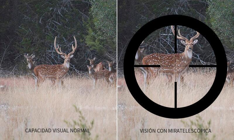 que significa magnificación o zoom en miras o visores telescopicos 3x9x40 o 4x32