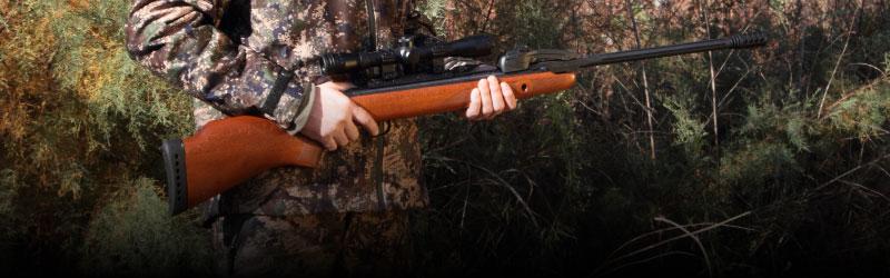 rifles de aire comprimido para caza