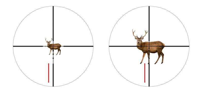 ventajas segundo plano focal